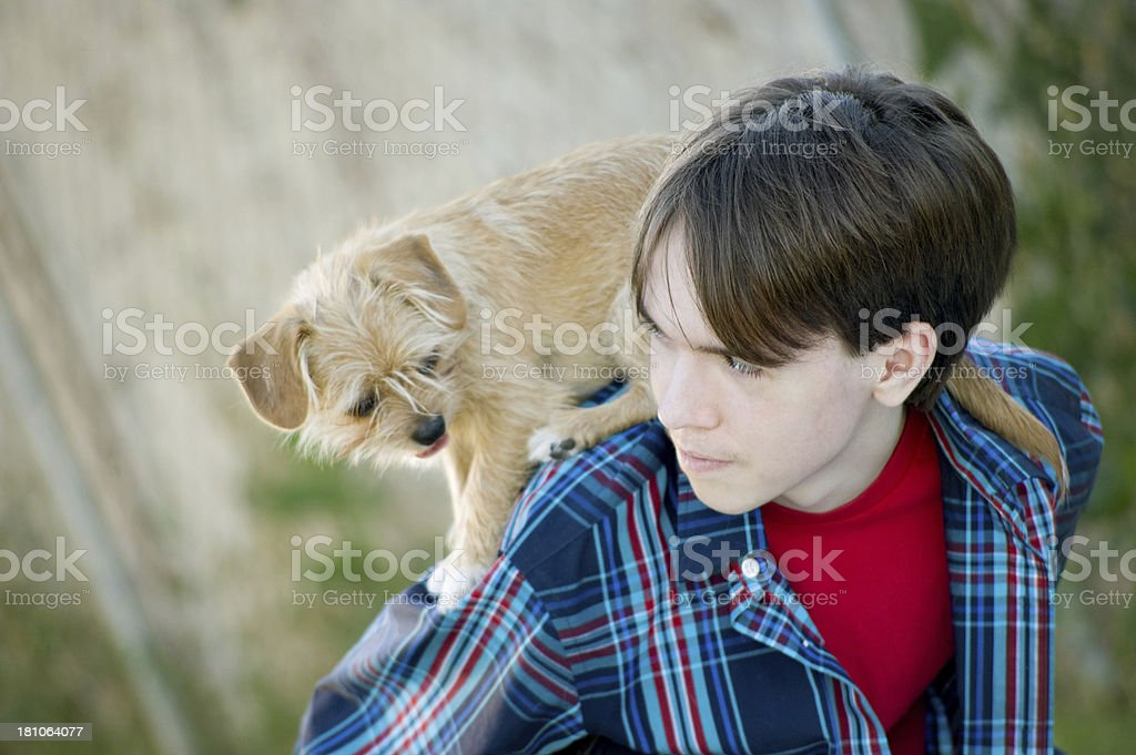 Puppy And Child stock photo