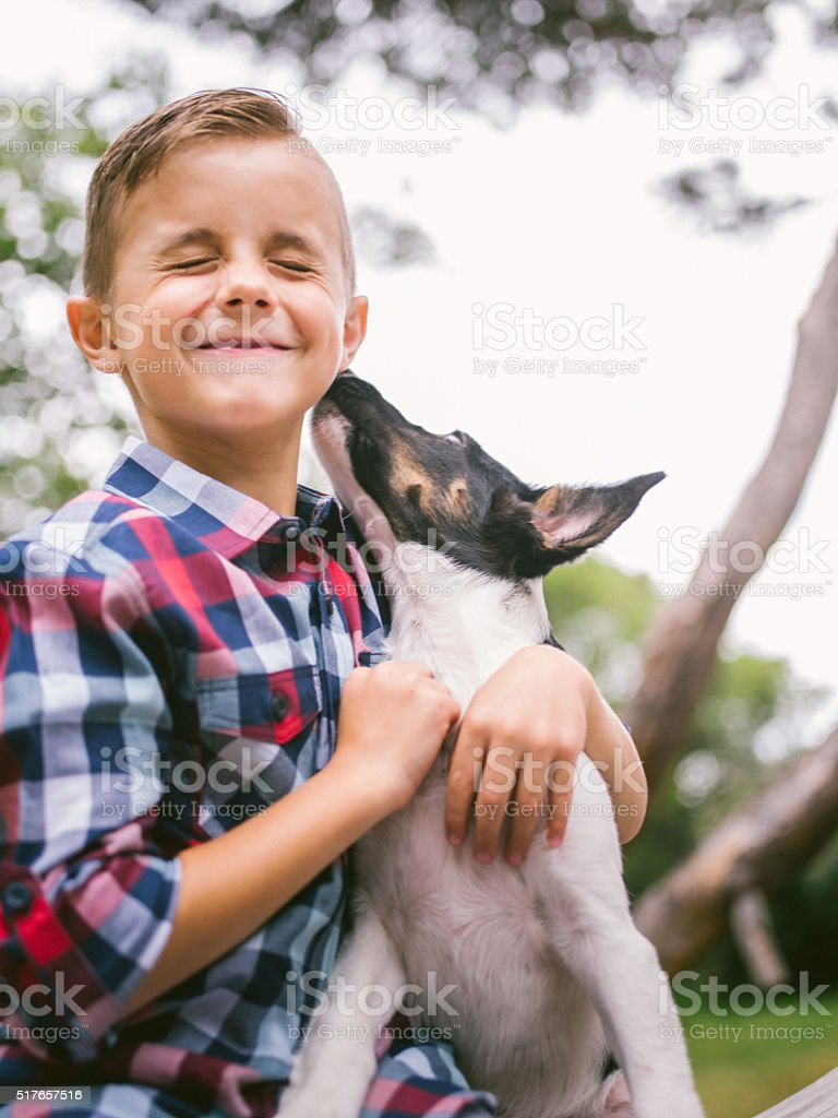 Puppy dog licking mischievous little boy's face in park stock photo