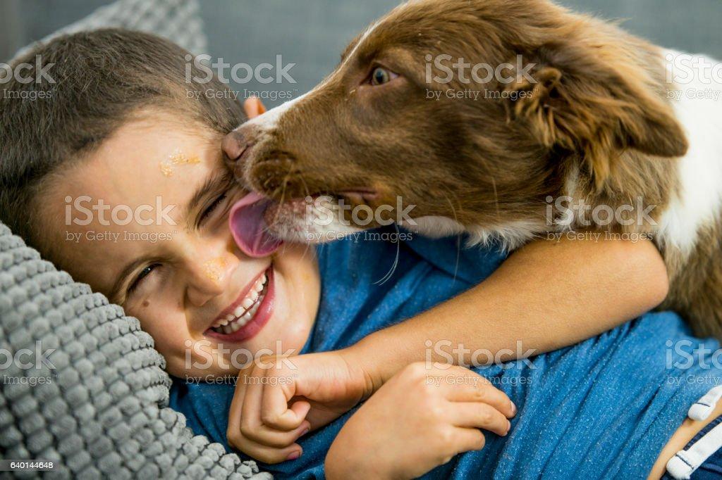 Puppy Kisses stock photo