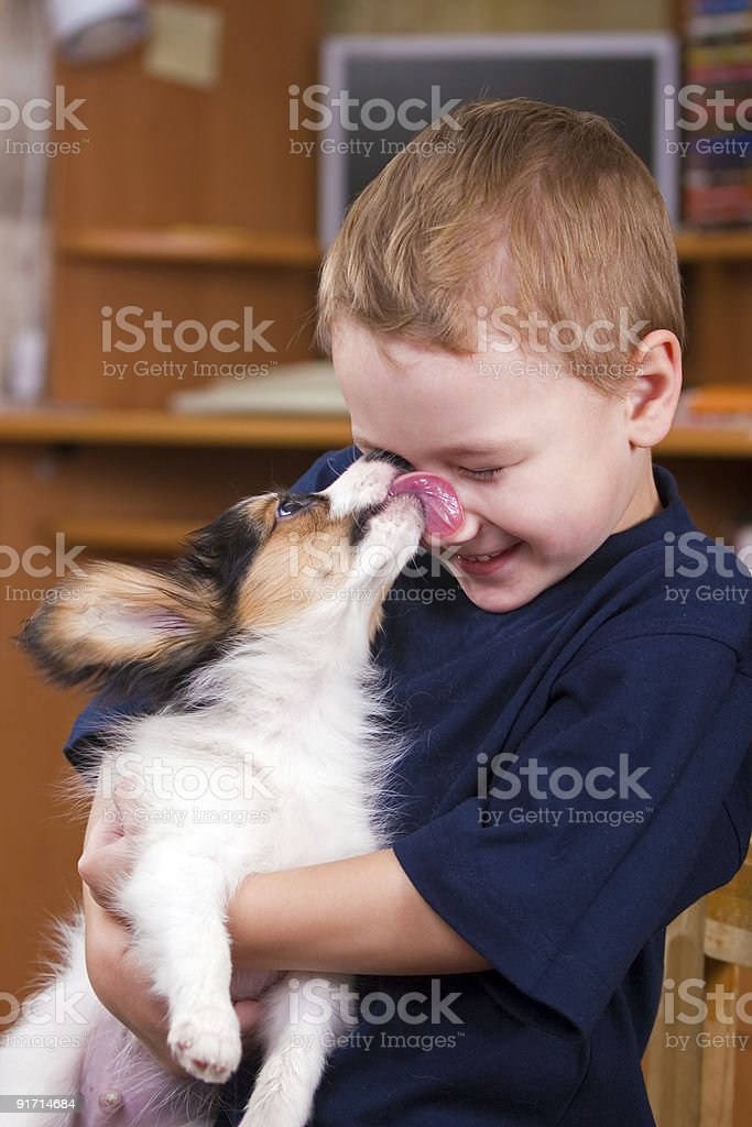 Puppy licking childs face stock photo