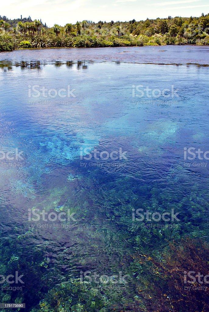 Pupu Springs, Golden Bay, New Zealand stock photo
