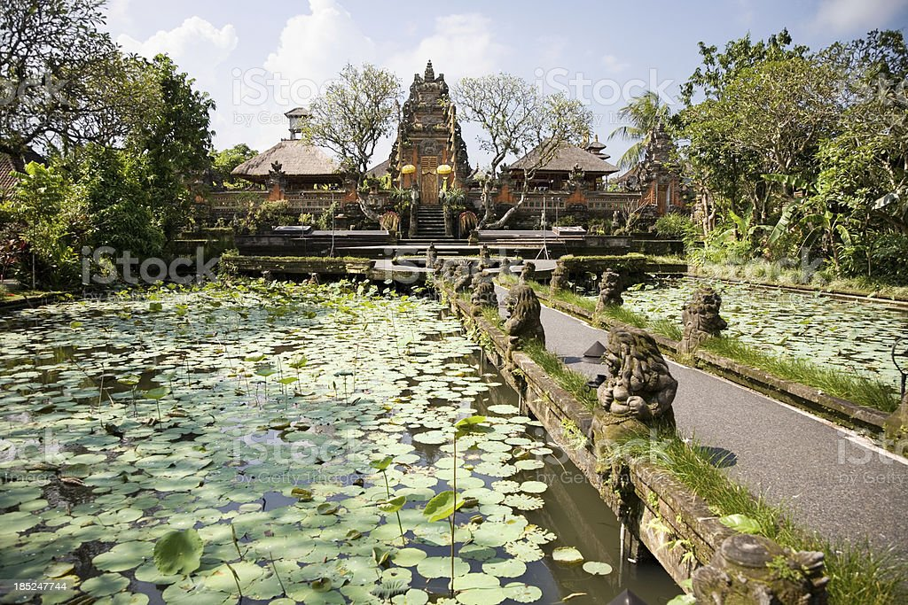 Pura Taman Saraswati temple Ubud Bali stock photo