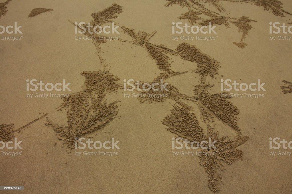 pure beach stock photo