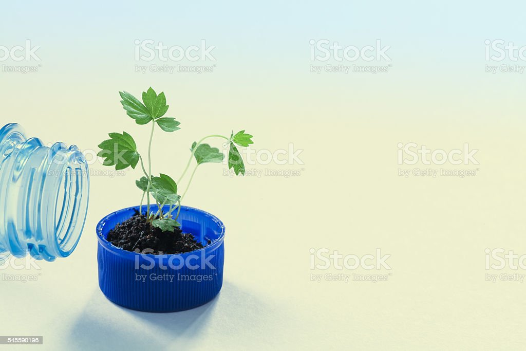 Pure water eco design conceptual poster. Empty bottleneck and green stock photo