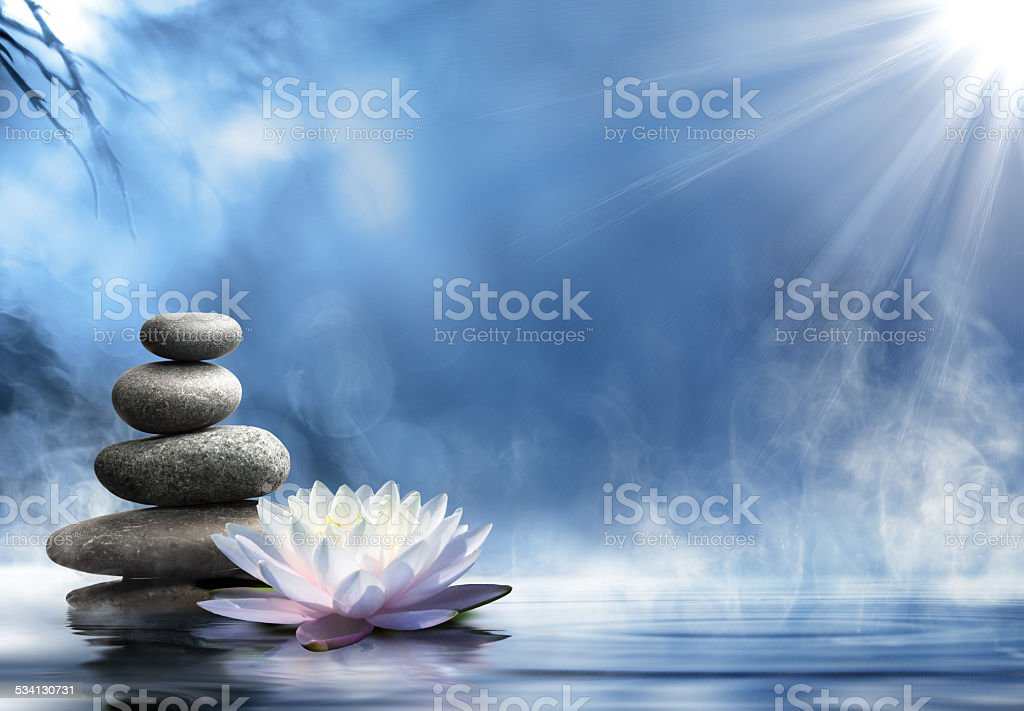 purity of the zen stones massage on water stock photo