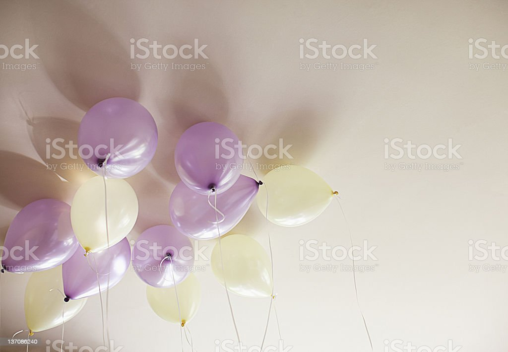 Purple and ivory balloons against ceiling stock photo