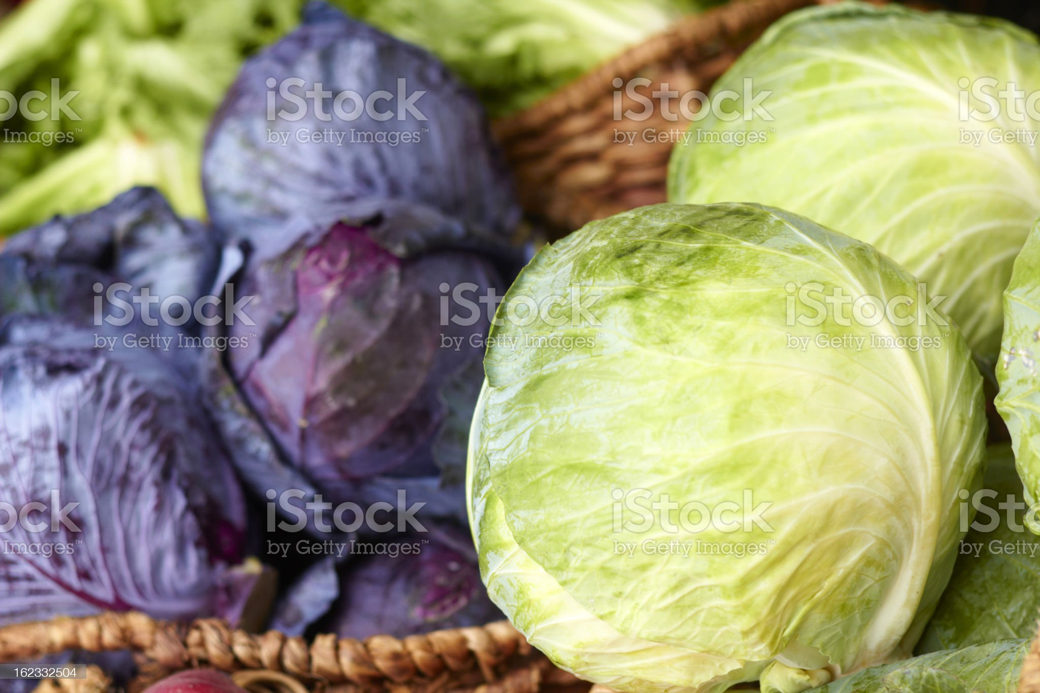 Purple And Ordinary Cabbages On Sale At the Market royalty-free stock photo
