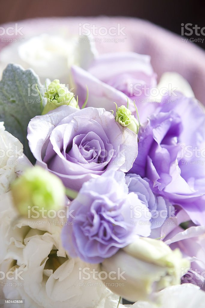 Purple and White Rose Bouquet Close-Up royalty-free stock photo