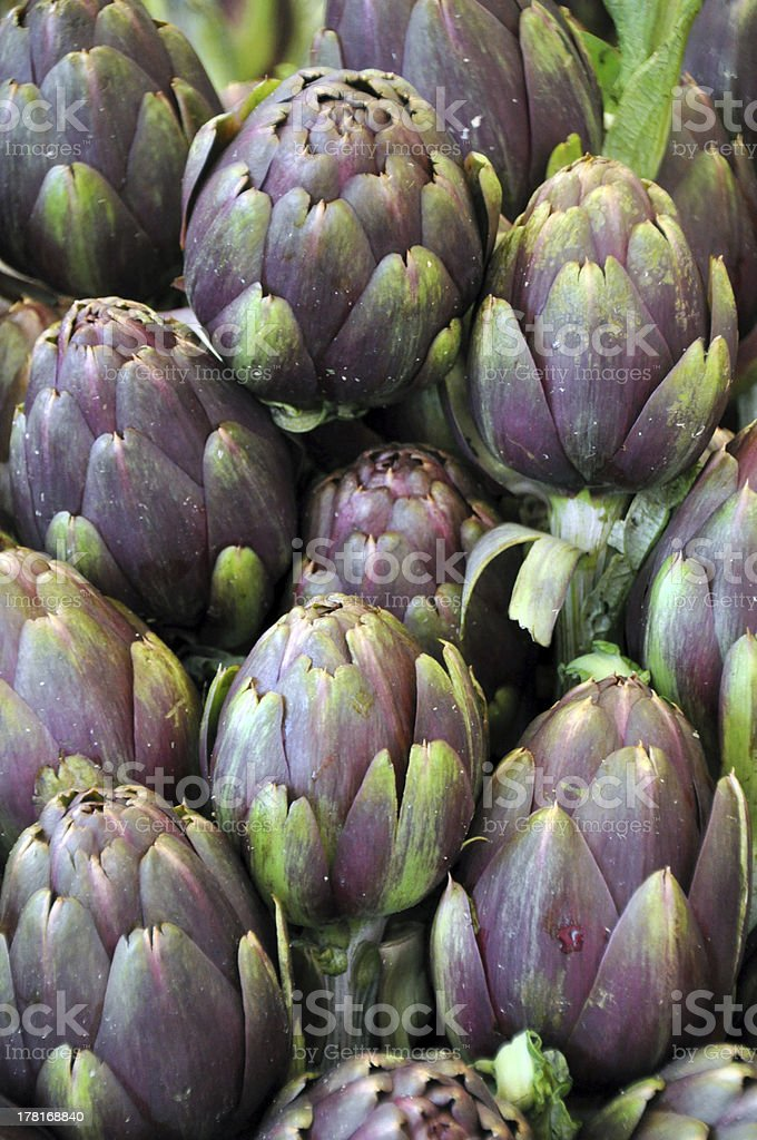 Purple artichokes stock photo