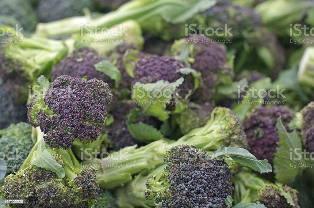Purple Broccoli royalty-free stock photo