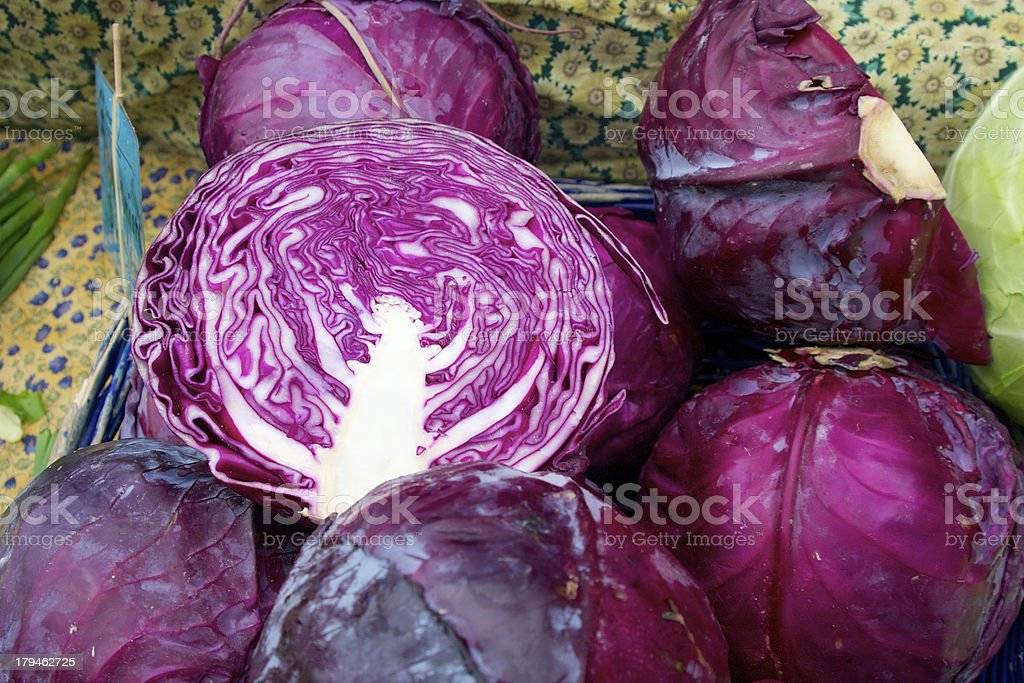 Purple cabbage royalty-free stock photo