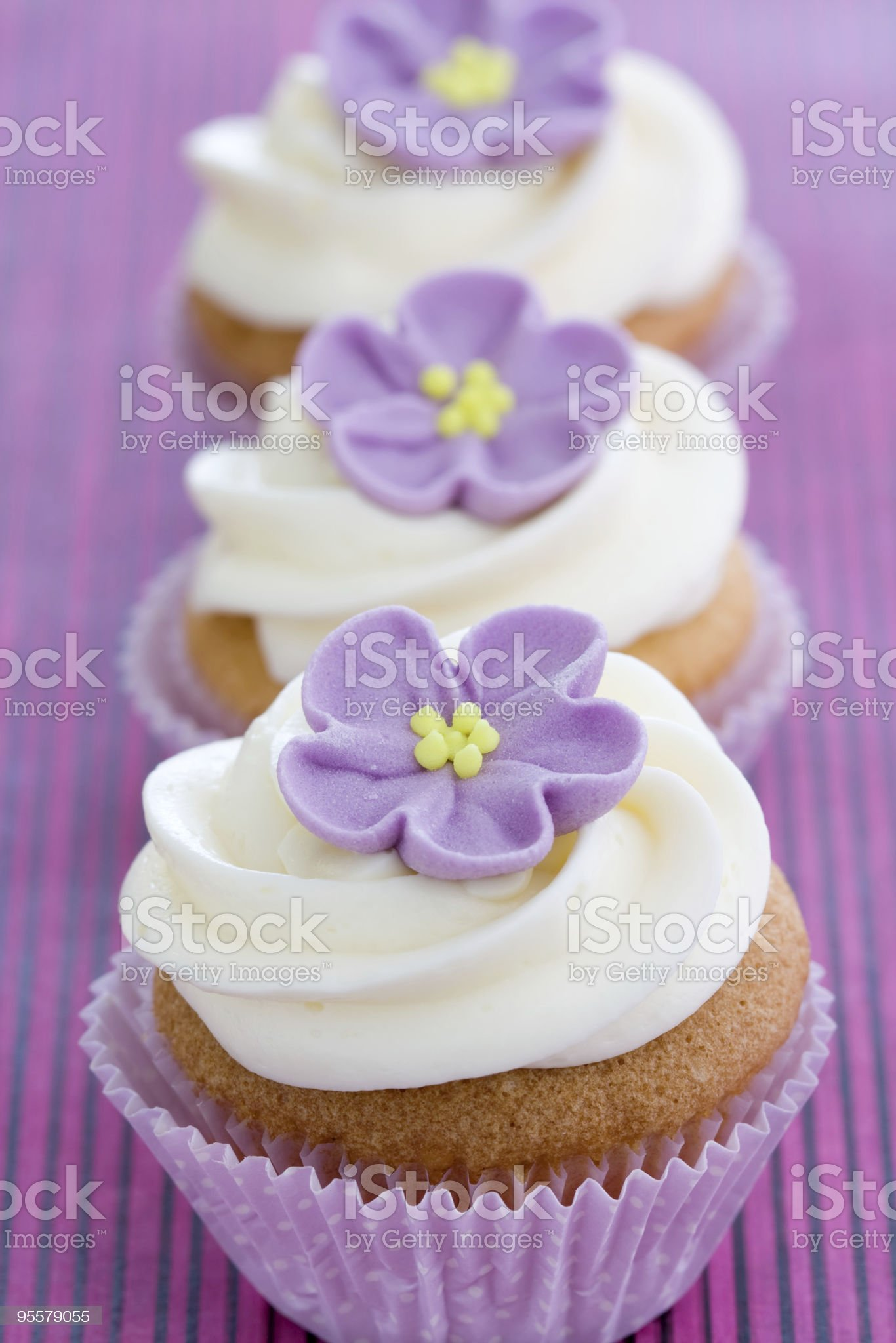 Purple cupcakes royalty-free stock photo