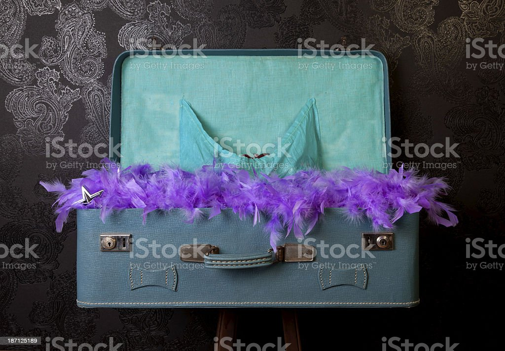 purple feather in old luggage royalty-free stock photo