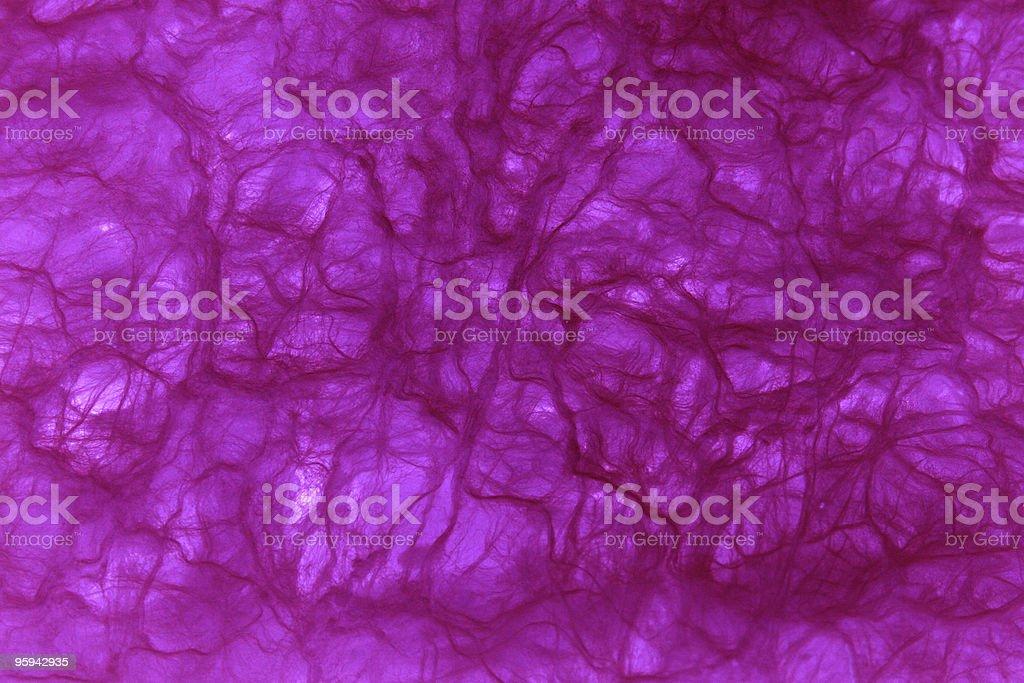 Fibre violet photo libre de droits