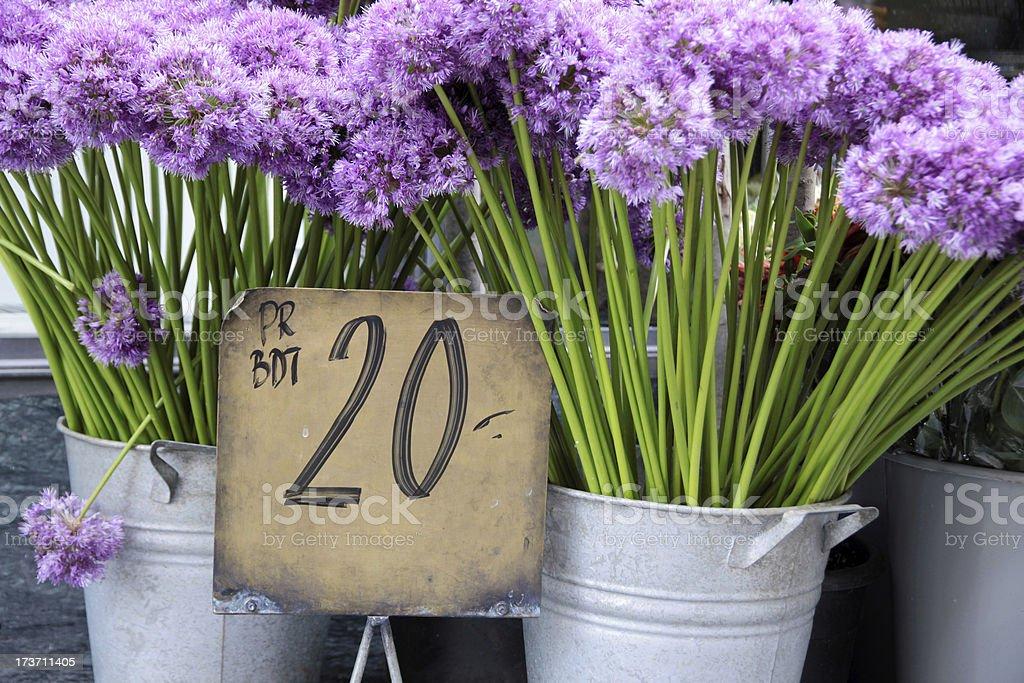 Purple flowers in a flower shop royalty-free stock photo