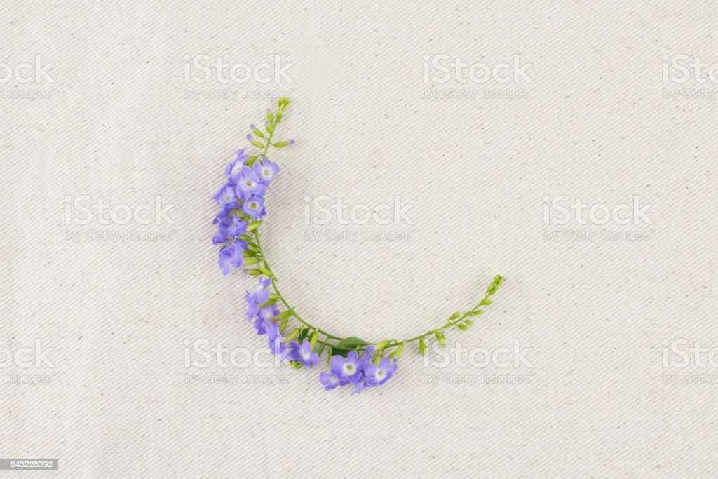 Purple flowers wreath of Duranta erecta L. stock photo