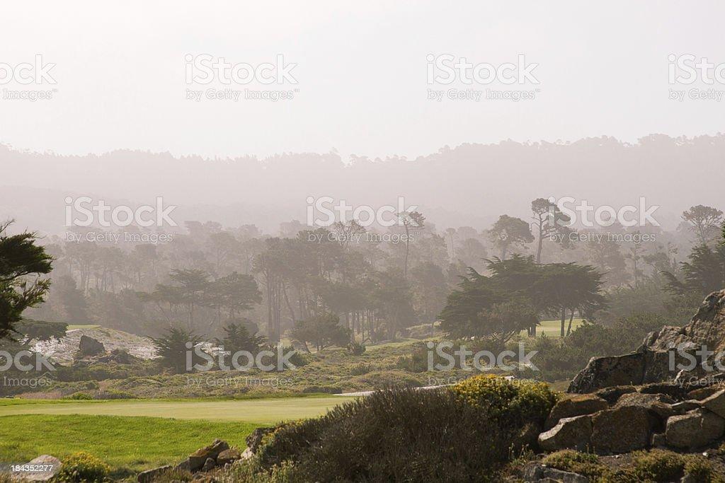 Purple Foggy Morning royalty-free stock photo