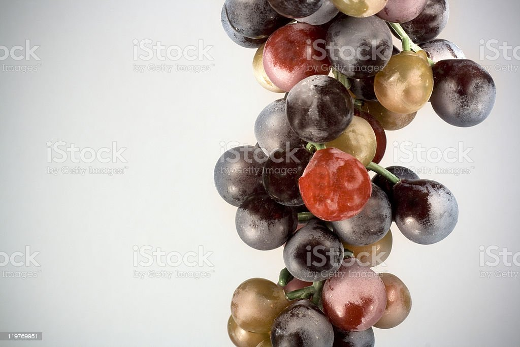 Purple Grapes on Gray stock photo