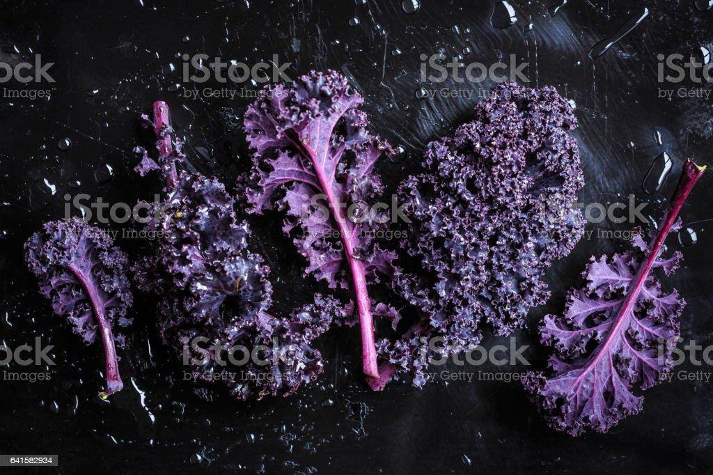 Purple kale leaves stock photo