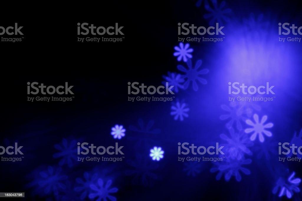purple light flowers stock photo
