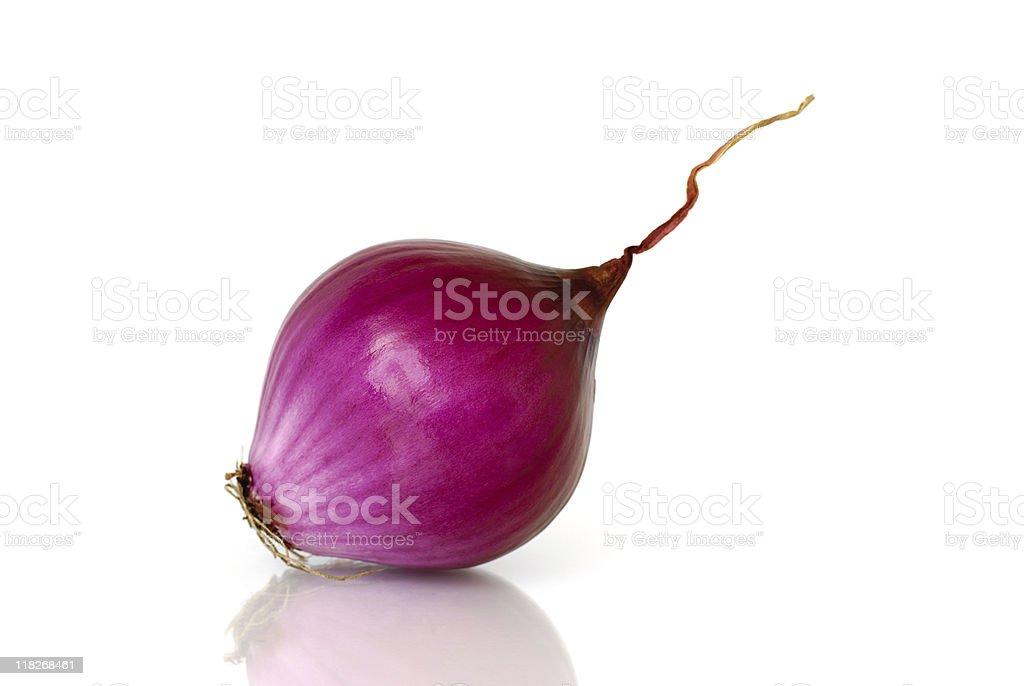 Purple onion royalty-free stock photo