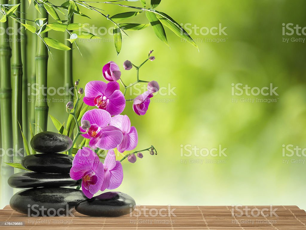 purple orchid, black stones and bamboo stock photo