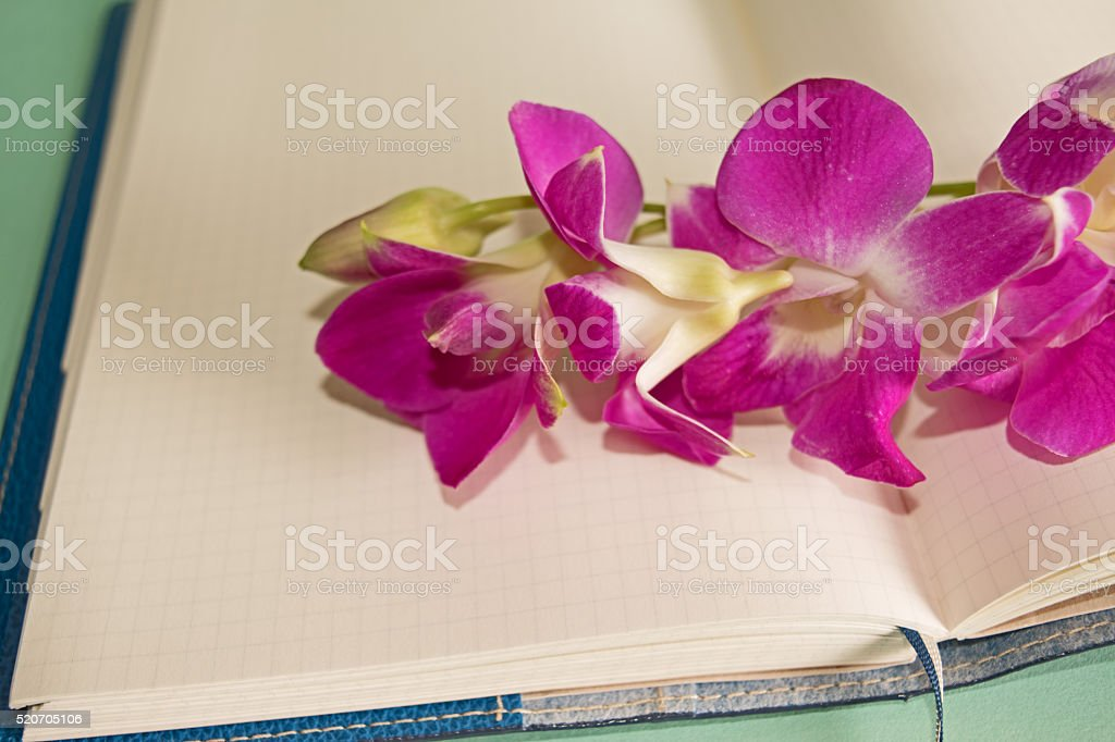 Purple Orchid Dendrobium with a notepad stock photo