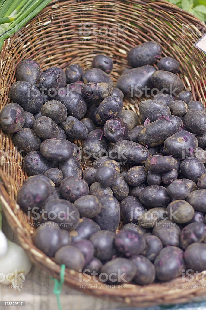 purple potatoes stock photo