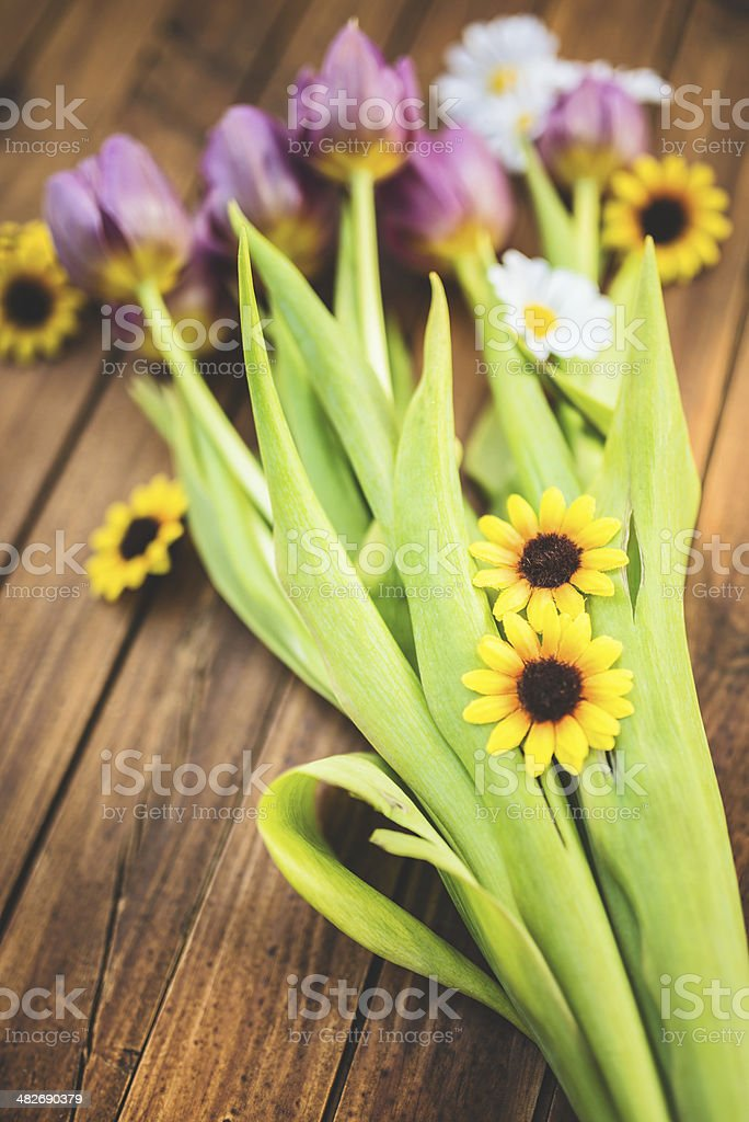 purple spring tulips and daisy flowers royalty-free stock photo