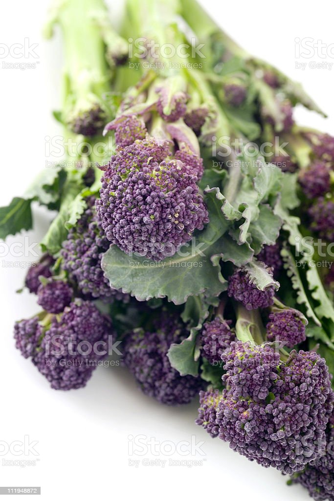Purple sprouting broccoli, close up view royalty-free stock photo