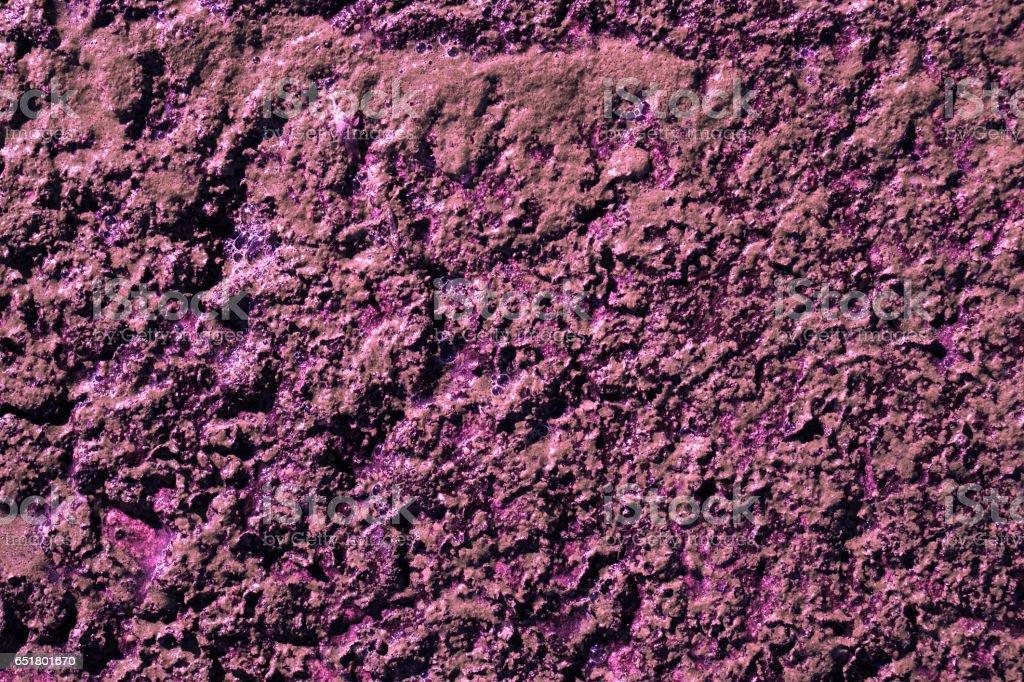 Purple swamp surface macro natural texture stock photo