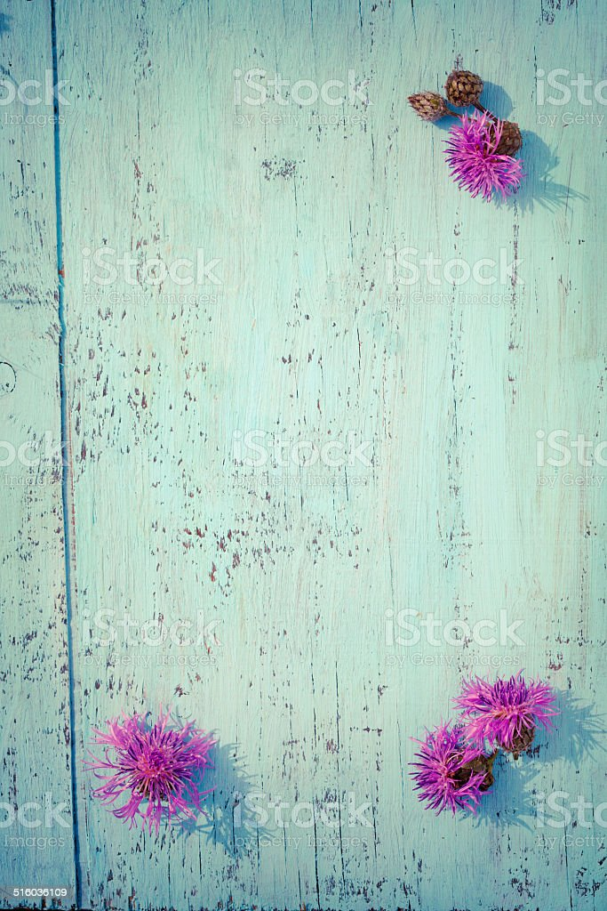 Purple thistle flowers on old wooden board, vintage colors stock photo