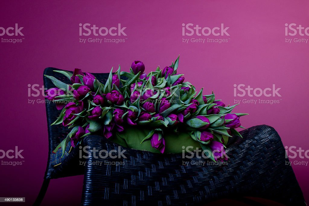 Purple tulips on black chair with green cushion royalty-free stock photo