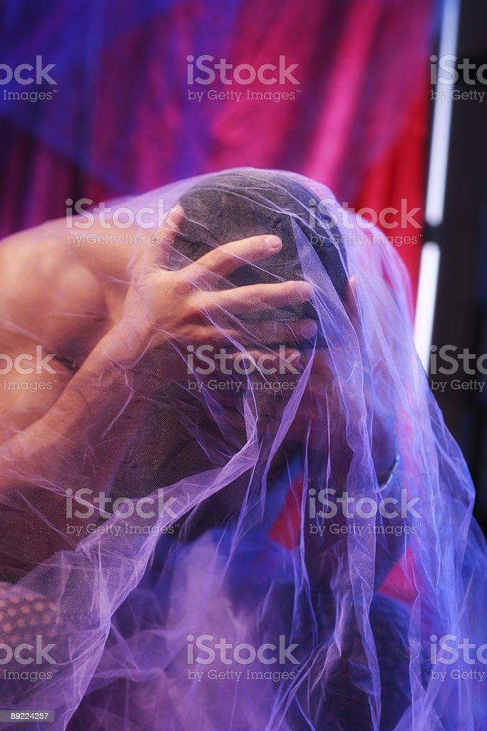 Purple Veil royalty-free stock photo