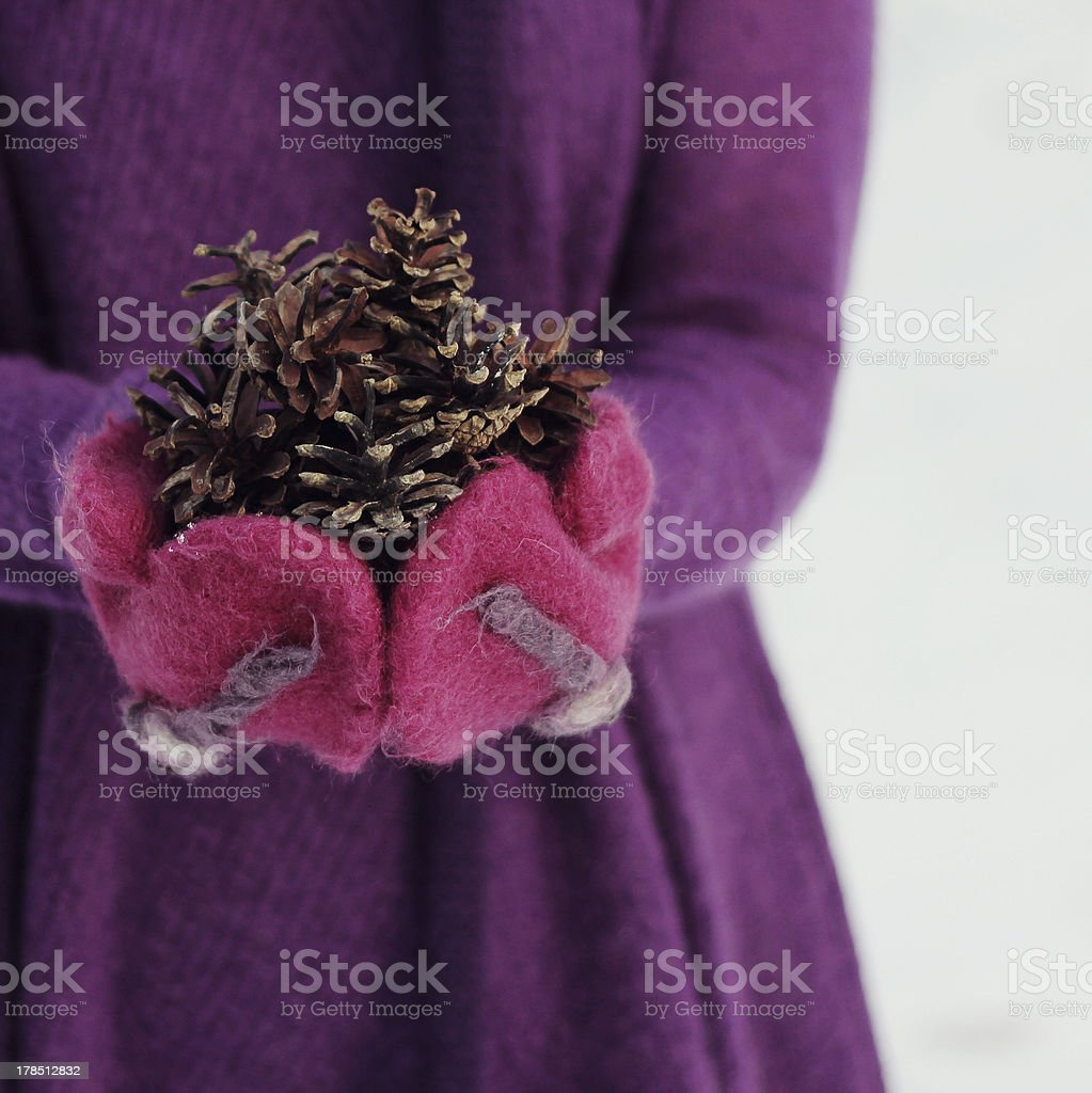 Purple winter royalty-free stock photo