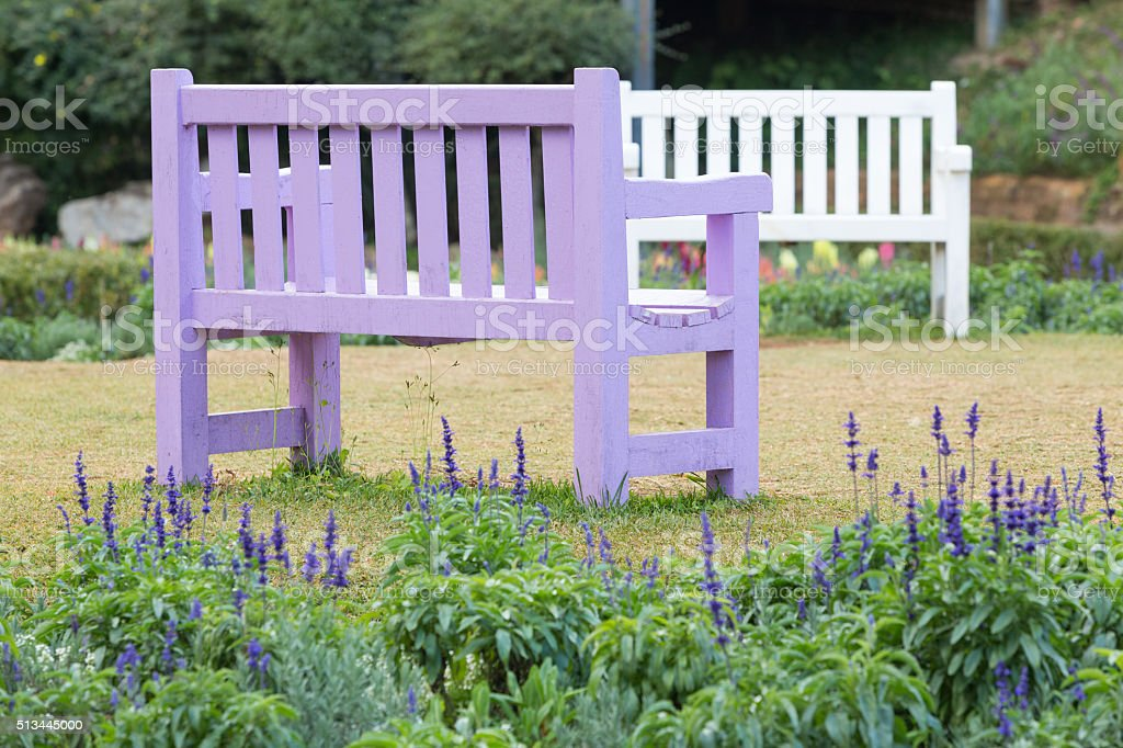 Purple wooden bench stock photo