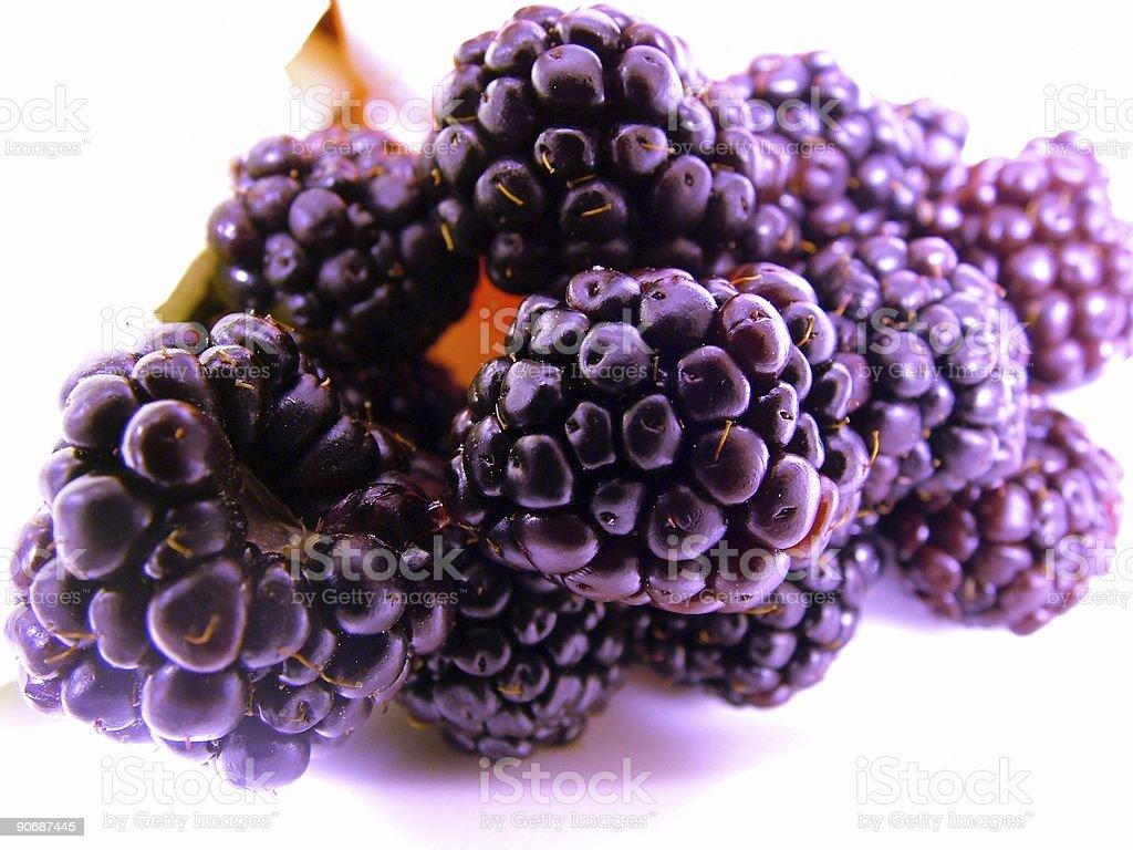 PurpleBlackBerry royalty-free stock photo