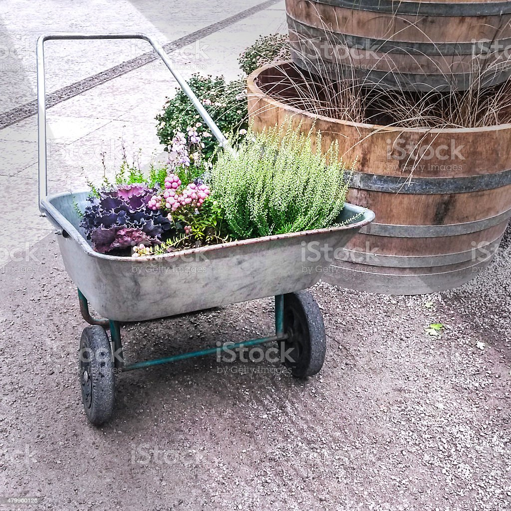 Push cart with flowers stock photo