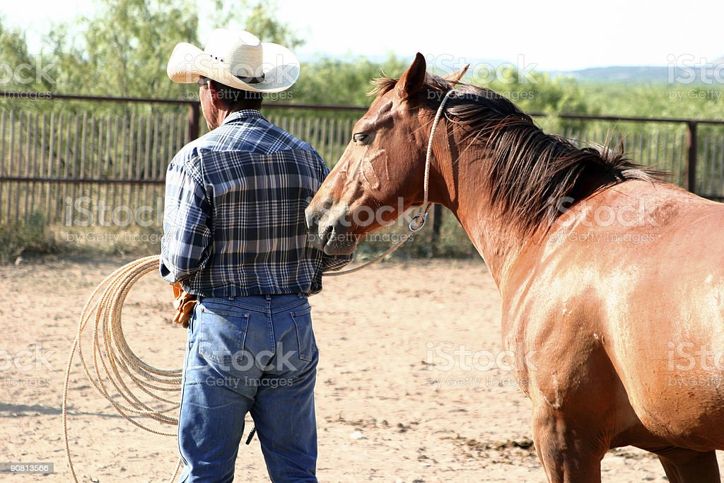 Pushed by My Horse royalty-free stock photo