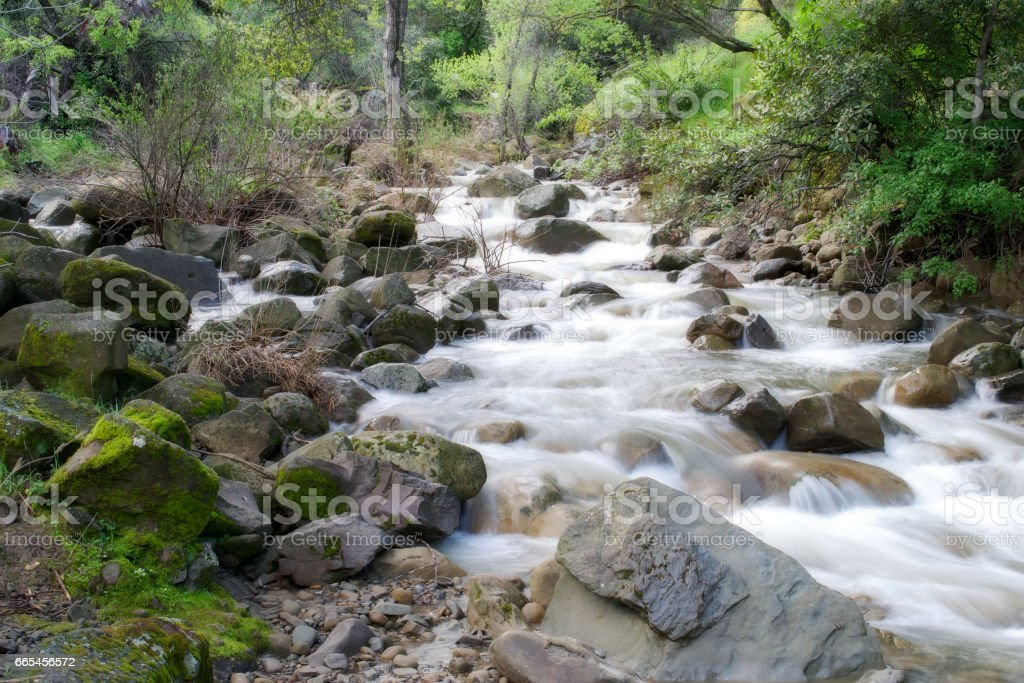 Putah Creek tributary in the Spring stock photo