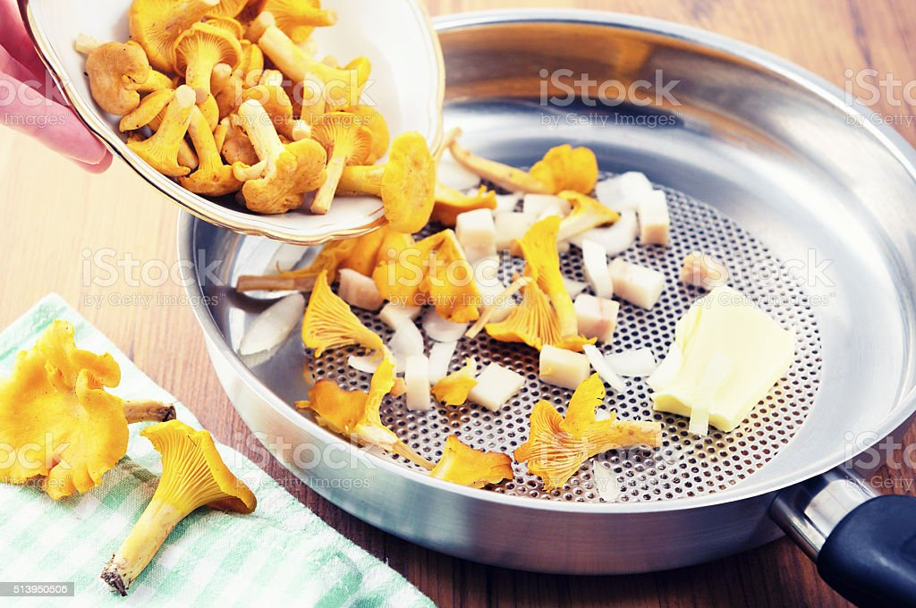 putting cup with fresh golden chanterelles mushroomes in frying pan stock photo