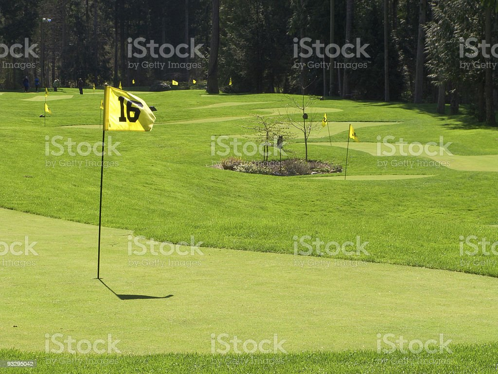 Putting golf green and flag royalty-free stock photo