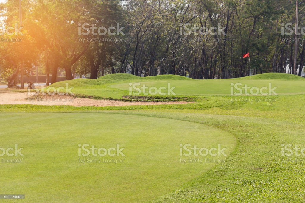 putting green grass stock photo