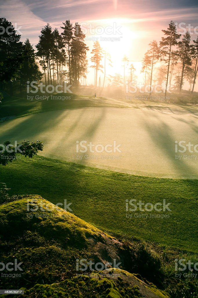 Putting Green in morning light royalty-free stock photo