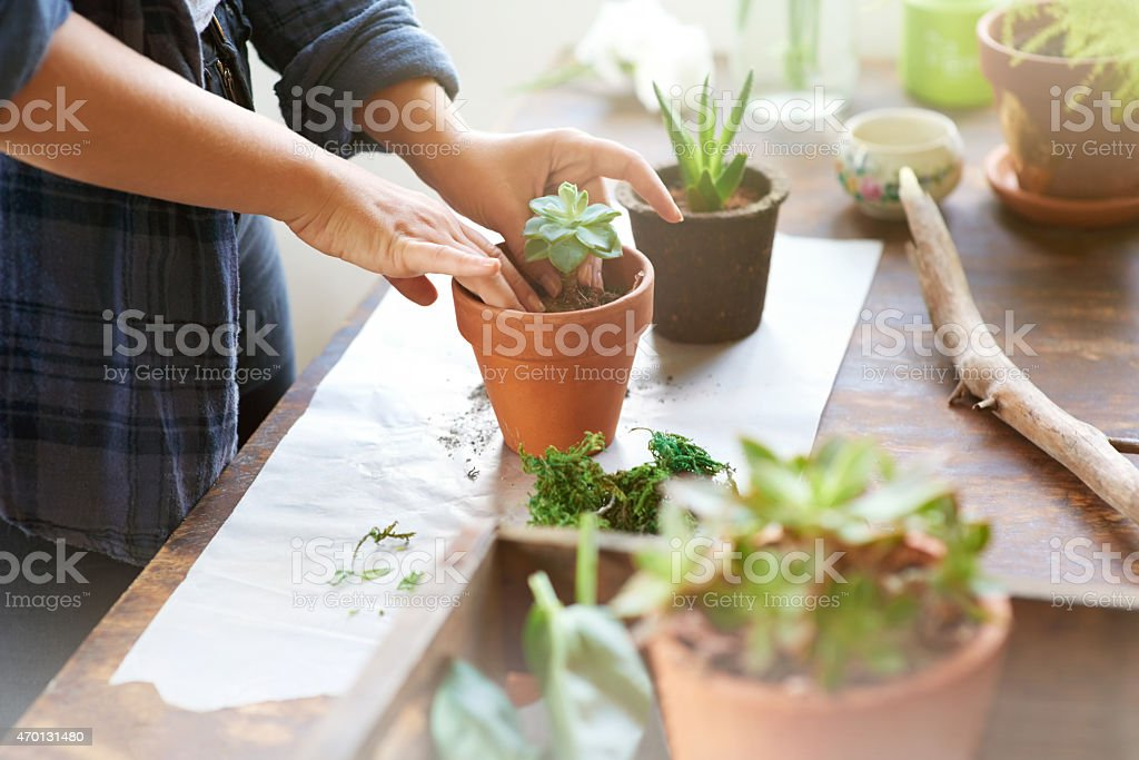 Putting her green thumbs to use stock photo