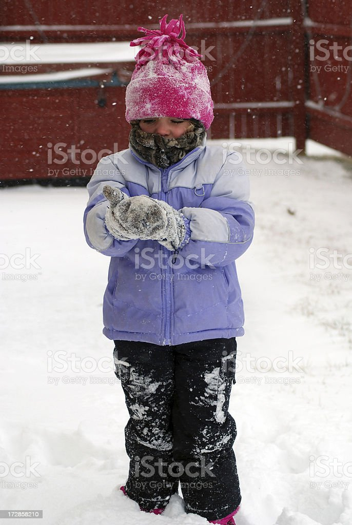 Putting on Mittens royalty-free stock photo