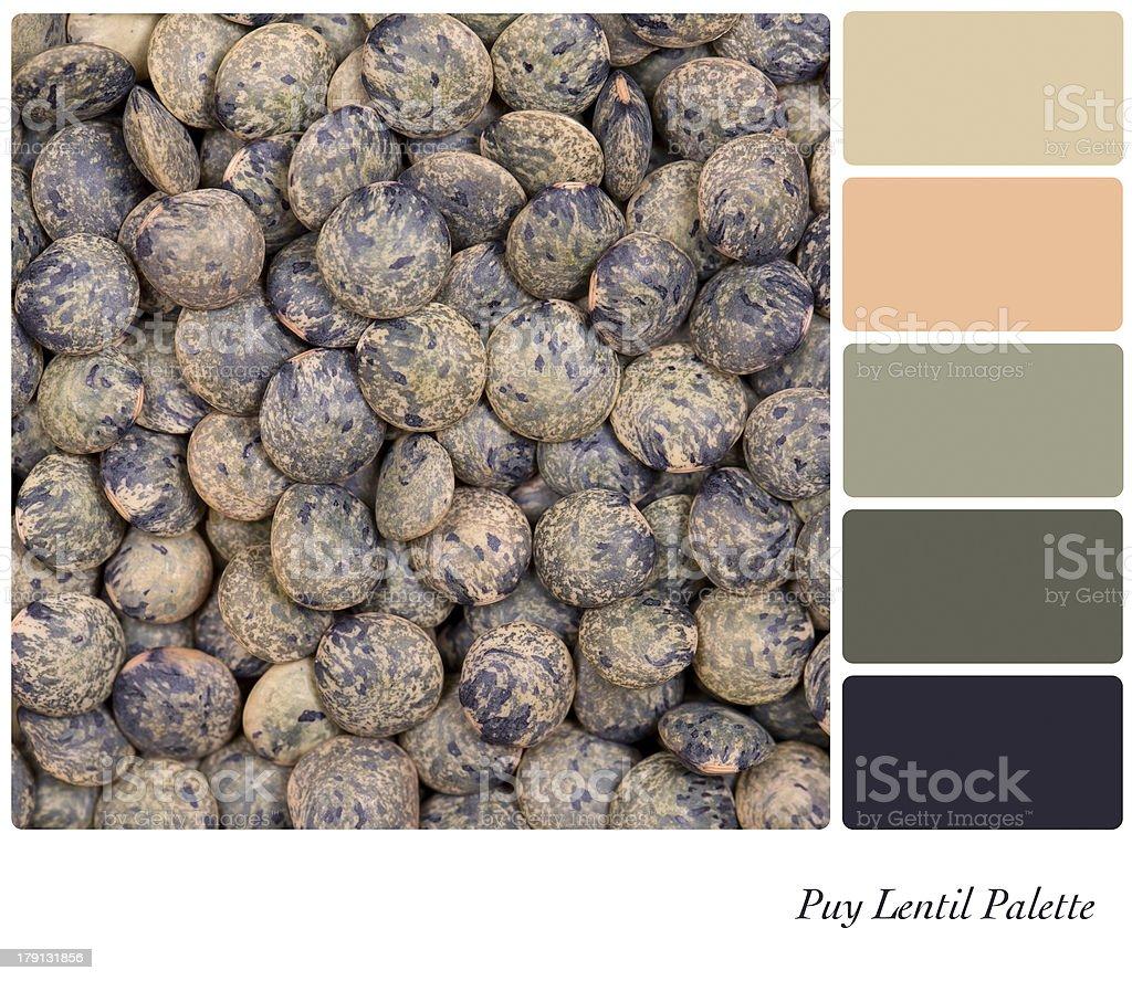 Puy Lentil Palette royalty-free stock photo