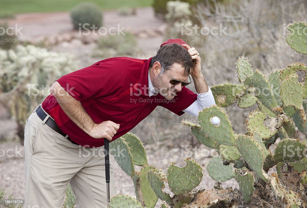 Puzzled Golfer With Ball Stuck in a Cactus royalty-free stock photo