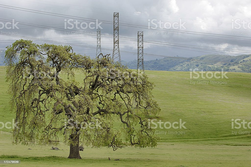 Pylons, Power Lines on Grassy Hills royalty-free stock photo