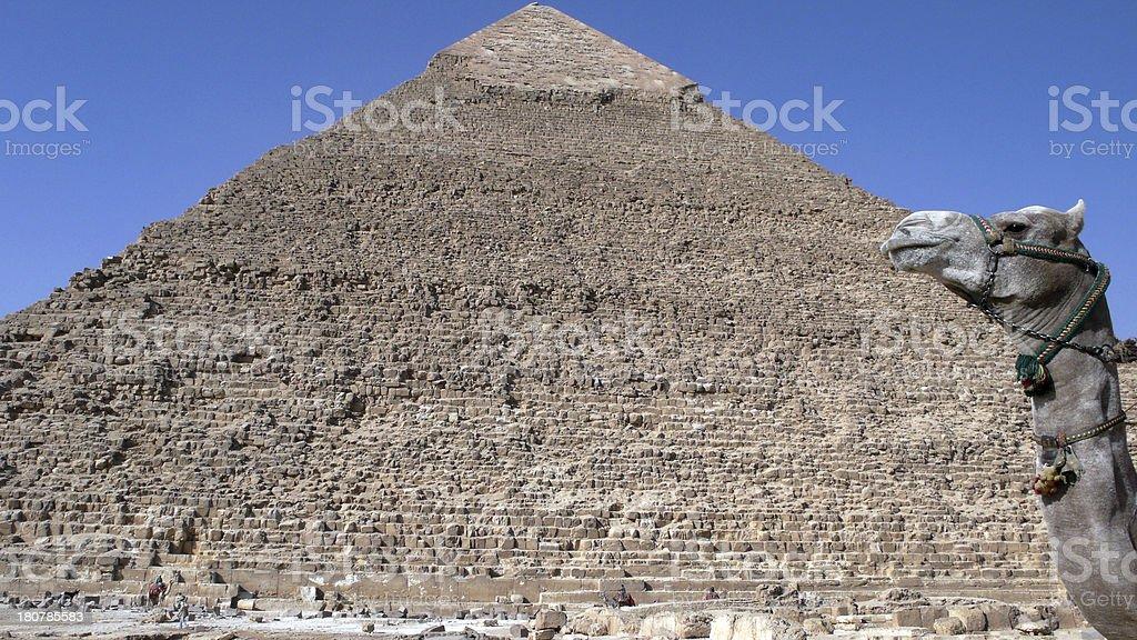 Pyramid. Egypt royalty-free stock photo